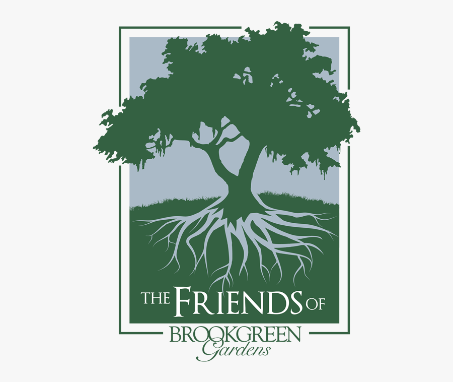 Transparent Group Of Friends Png - Live Oak Tree Black And White, Transparent Clipart