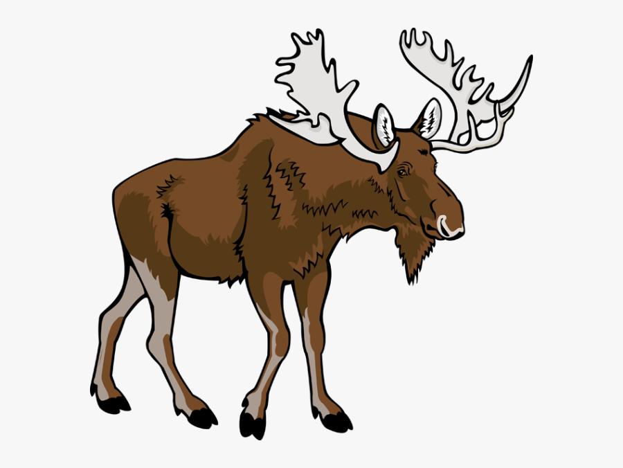 Cartoon Moose Clipart Free Clip Art Image Image - Transparent Background Moose Clipart, Transparent Clipart