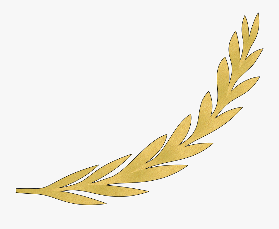 Plant,flower,leaf - Golden Olive Branch Vector, Transparent Clipart