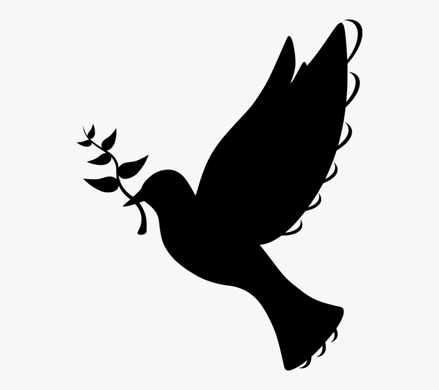 Silhouette, Peace, Dove, Flying, Olive, Branch, Symbol - Batak Christian Protestant Church, Transparent Clipart