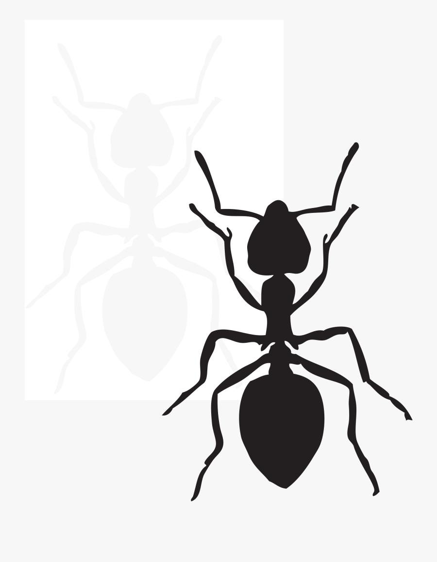 Ant Clip Art, Transparent Clipart