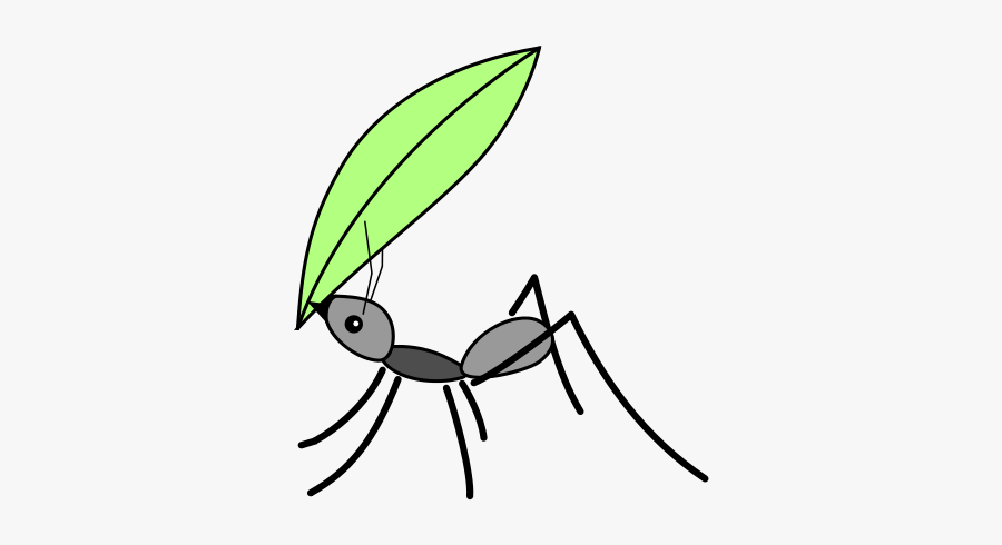 Ant With Leaf Drawing, Transparent Clipart