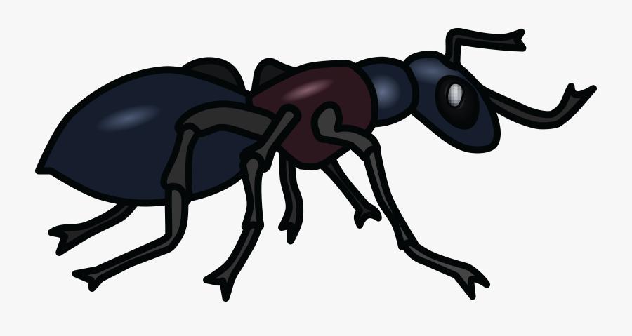 Transparent Ant Clipart - Clip Art Black And White Ant, Transparent Clipart