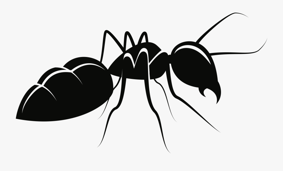 Fly,ant,silhouette - Ant Clipart, Transparent Clipart