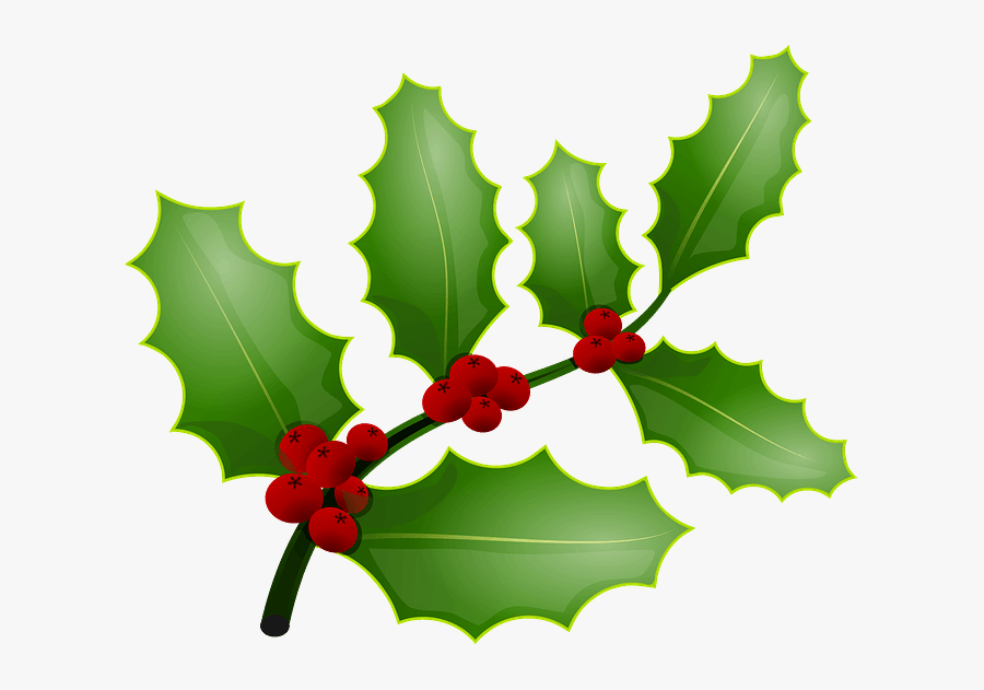 Mistletoe And Holly The Same Thing, Transparent Clipart