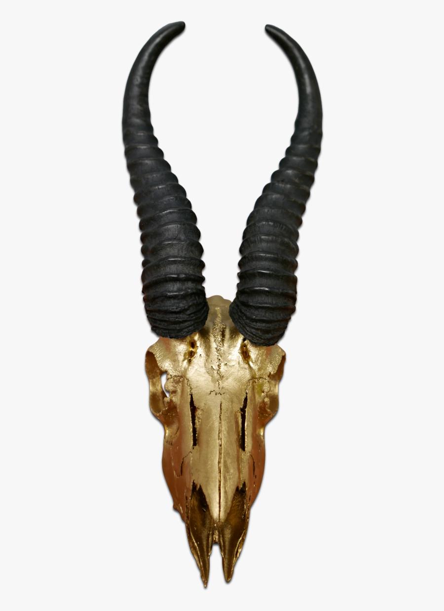 Painted Animal Skulls - Antelope, Transparent Clipart