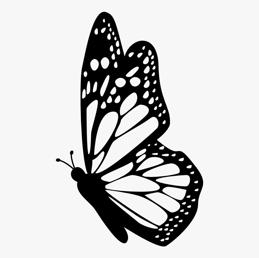 Interesting Facts About Butterflies - Butterfly Outline Side View, Transparent Clipart