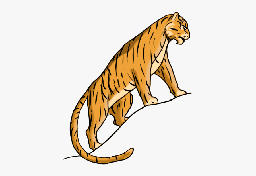 How To Draw A Tiger Easy For Kids - Tiger Easy To Draw, Transparent Clipart