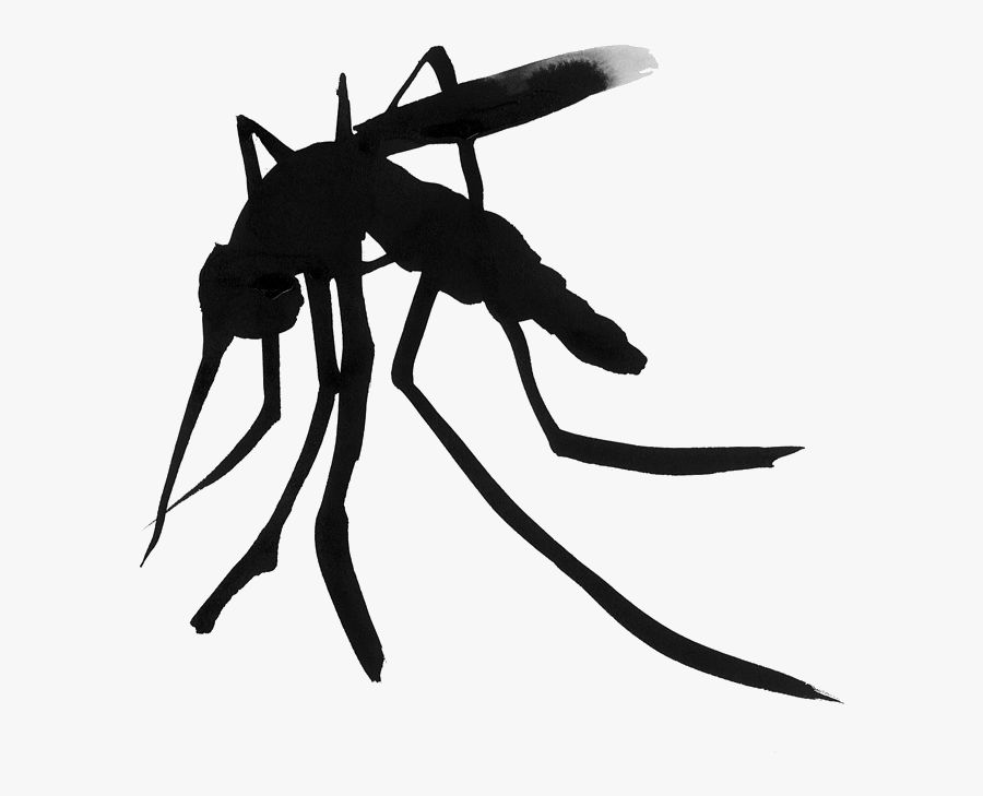 Mosquito Household Insect Repellents Amazon - Deet, Transparent Clipart