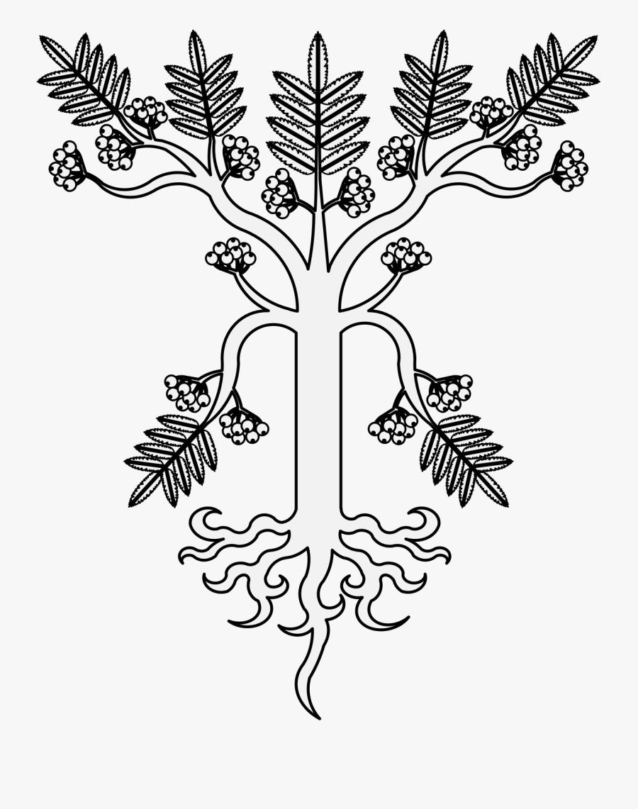 Transparent Twisted Tree Clipart - Illustration, Transparent Clipart