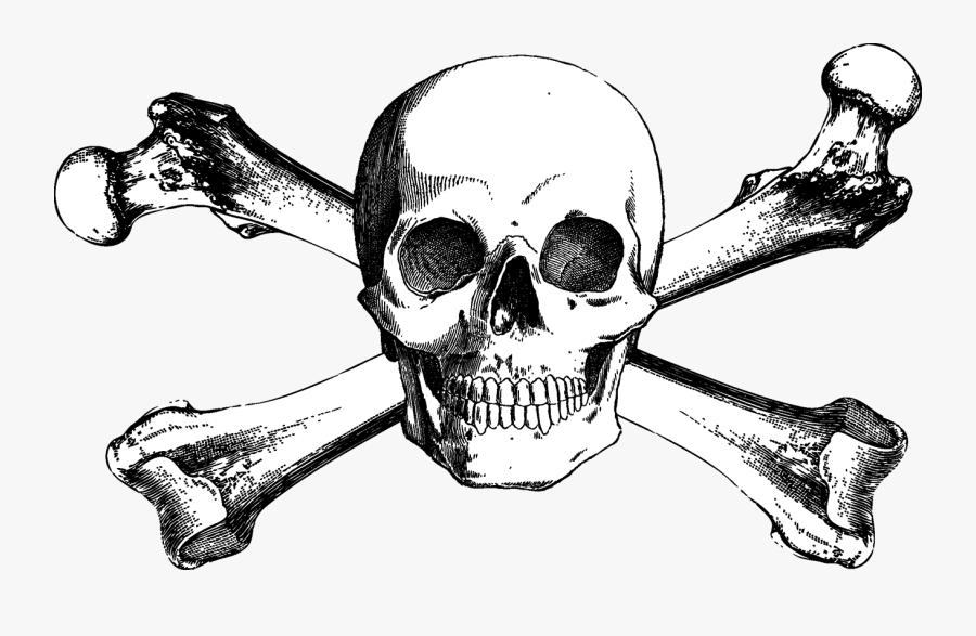 And Bones Drawing Skull Crossbones Free Download Png - Free Skull And Crossbones, Transparent Clipart