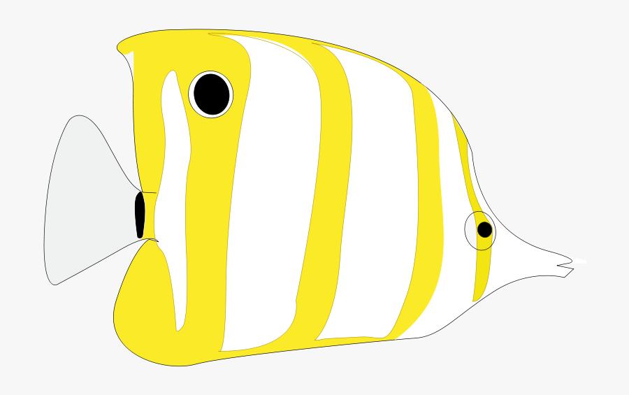 Tropical Fish, Transparent Clipart