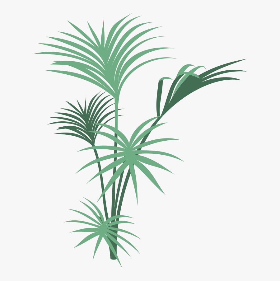 Transparent Tropical Rainforest Clipart - Jungle Plants Png Transparent, Transparent Clipart