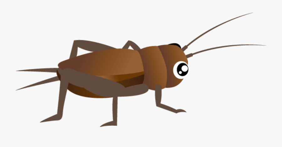 Clipart Png Cricket - Cricket Bug Png Transparent, Transparent Clipart