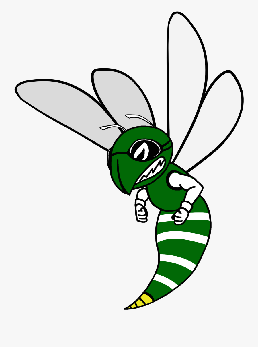 Support Our Teams - Net-winged Insects, Transparent Clipart