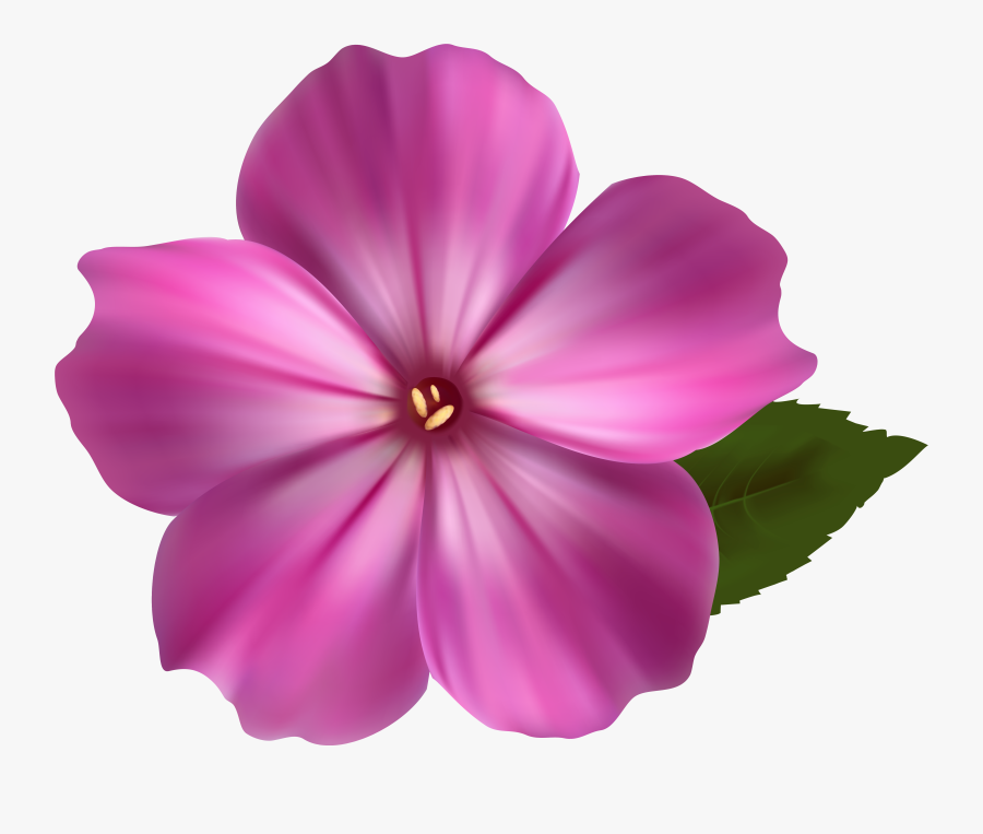 Pink Flower Clipart - Colorful Flower Design Drawing, Transparent Clipart