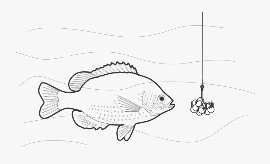Art,monochrome Photography,fish - Fishing, Transparent Clipart