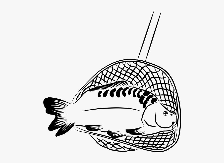 Fisherman Clipart Net - Fish In The Net Clip Art, Transparent Clipart