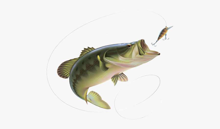 Svg Library Stock Bait Rods Deanlevin Info - Fishing Rod With Fish Png, Transparent Clipart