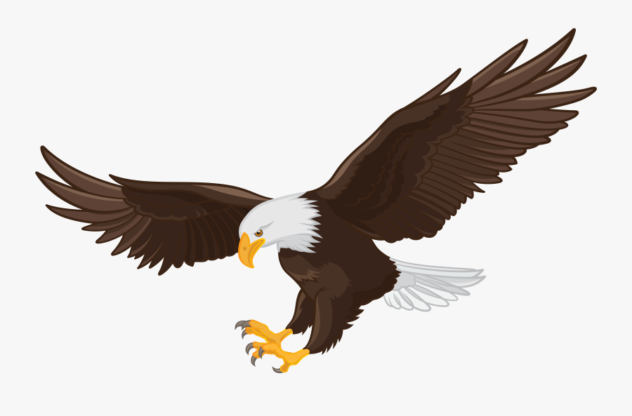 American Eagle Hunting | Photo, Information