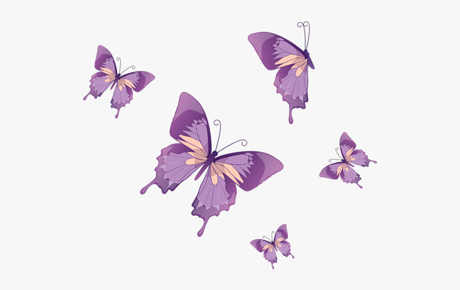 Purple Butterfly Vector Png, Transparent Clipart