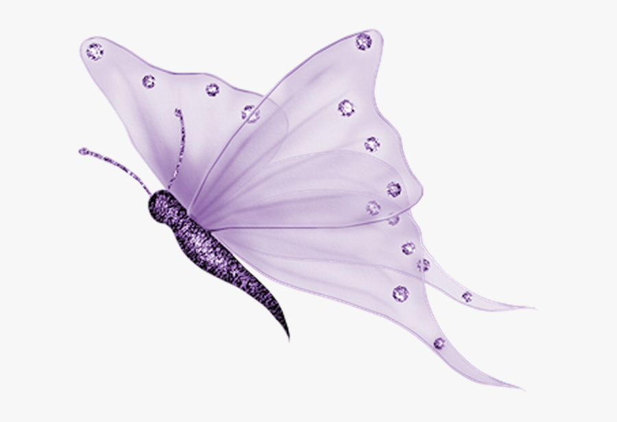 Glasswing Butterfly Portable Network Graphics Clip - White Butterfly Png, Transparent Clipart
