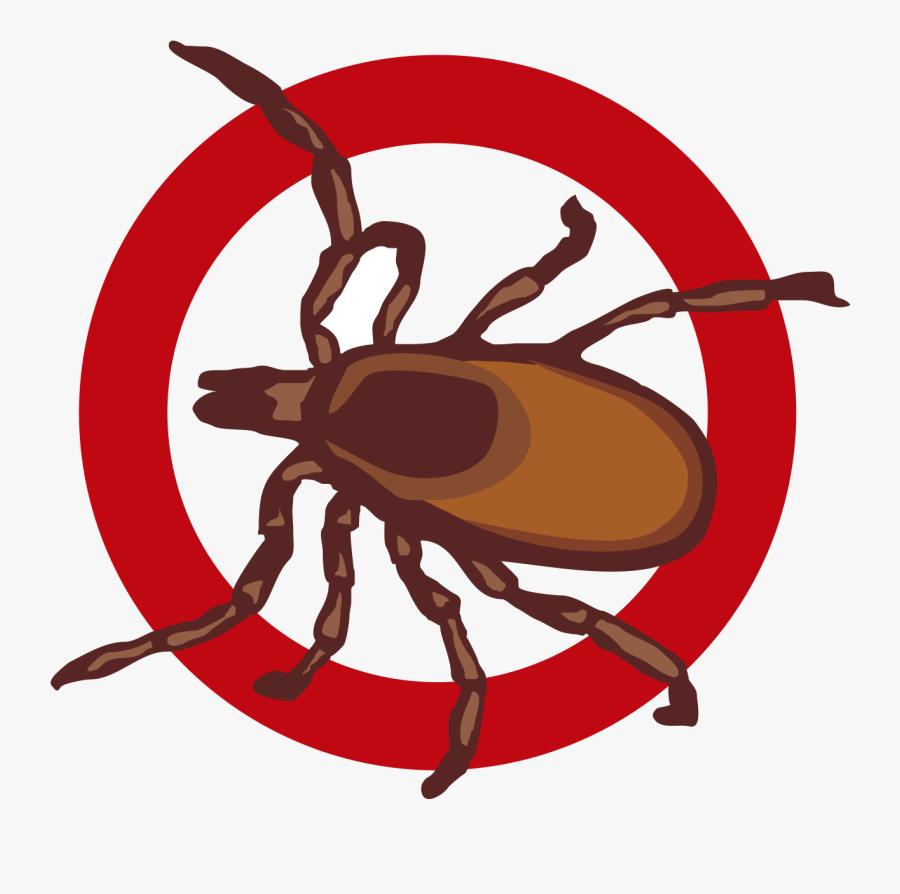Pest Control Specialists Clipart , Png Download - Pest, Transparent Clipart
