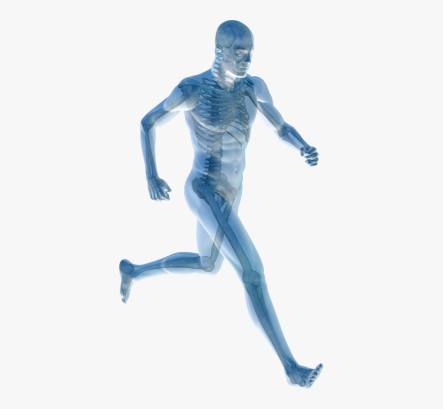Human Body Joint Pain Pain Management Physical Therapy - Human Body Icon Png, Transparent Clipart