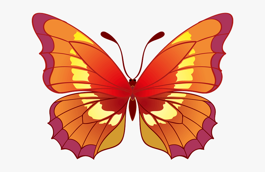 Brush-footed Butterfly, Transparent Clipart