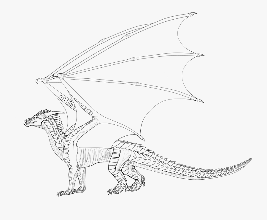 Line Art Wings Of Fire Drawing Dragon - Dragon Base Lineart, Transparent Clipart
