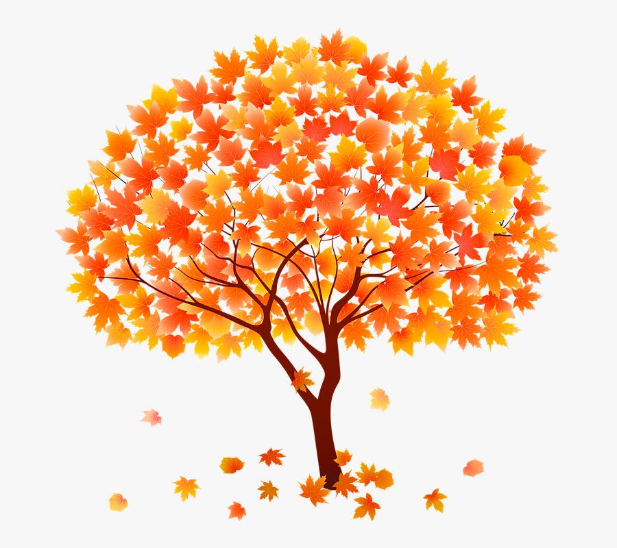 Autumn Tree Vector Png, Transparent Clipart
