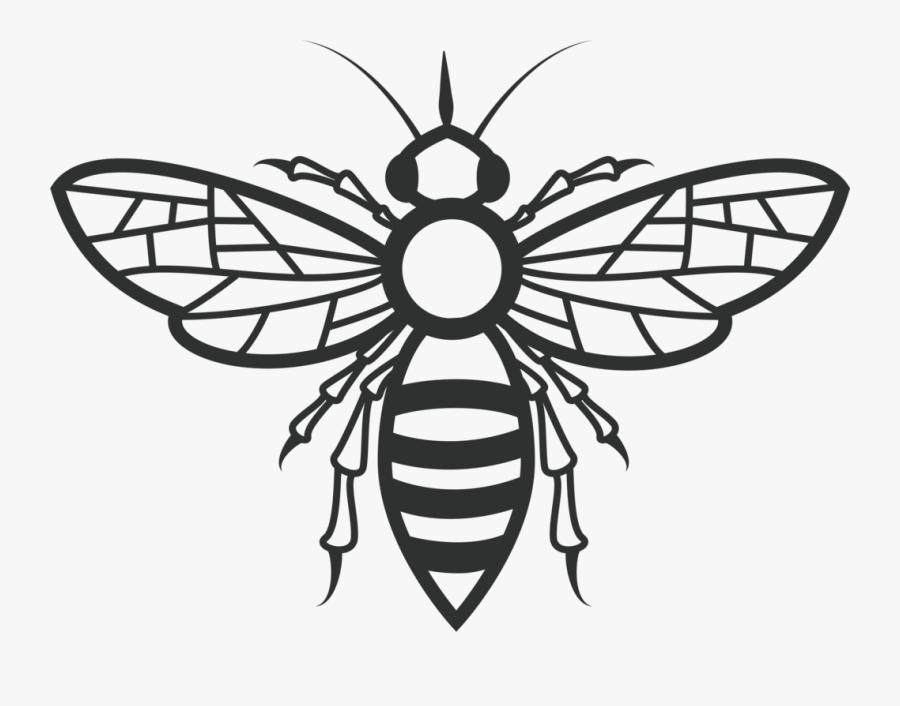 Fly,line Art,symmetry - Honey Bee Cute Art, Transparent Clipart