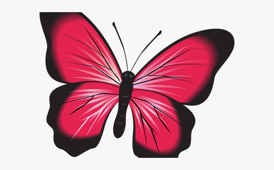 Insect Clipart Butterfly - Transparent Clipart Blue Butterfly, Transparent Clipart