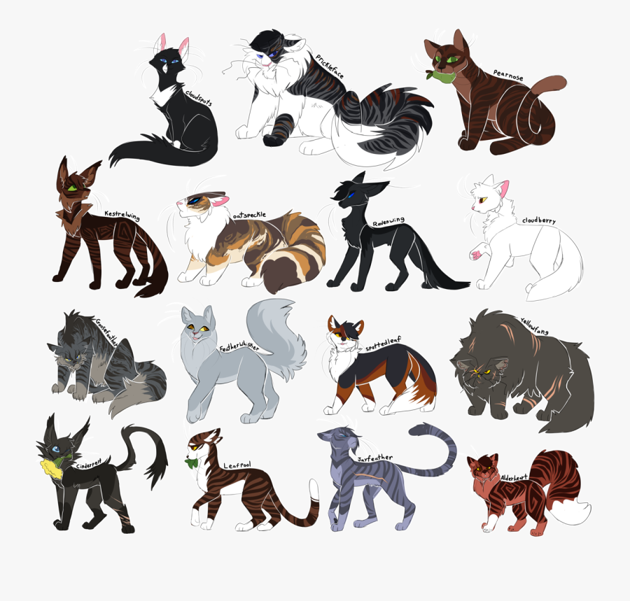 Phew All Of The Thunderclan Medicine Cats You Know, - Draikinator Warrior Cats Designs, Transparent Clipart