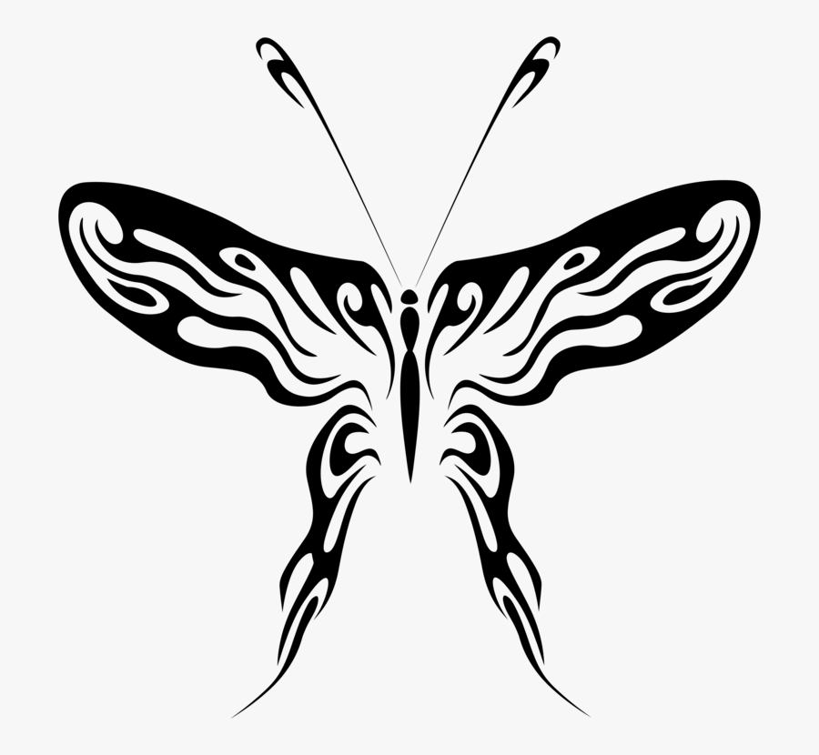 Symmetry,monochrome Photography,pollinator - Drawing Of Brush Footed Butterfly, Transparent Clipart