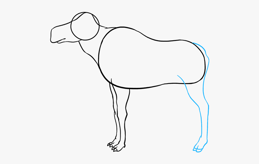 How To Draw Moose - Line Art, Transparent Clipart