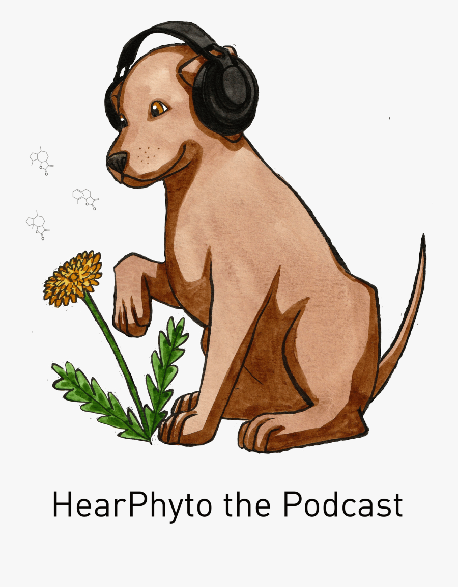 """A Podcast About Ephedra""""  Style=""""max Width - Illustration, Transparent Clipart"""