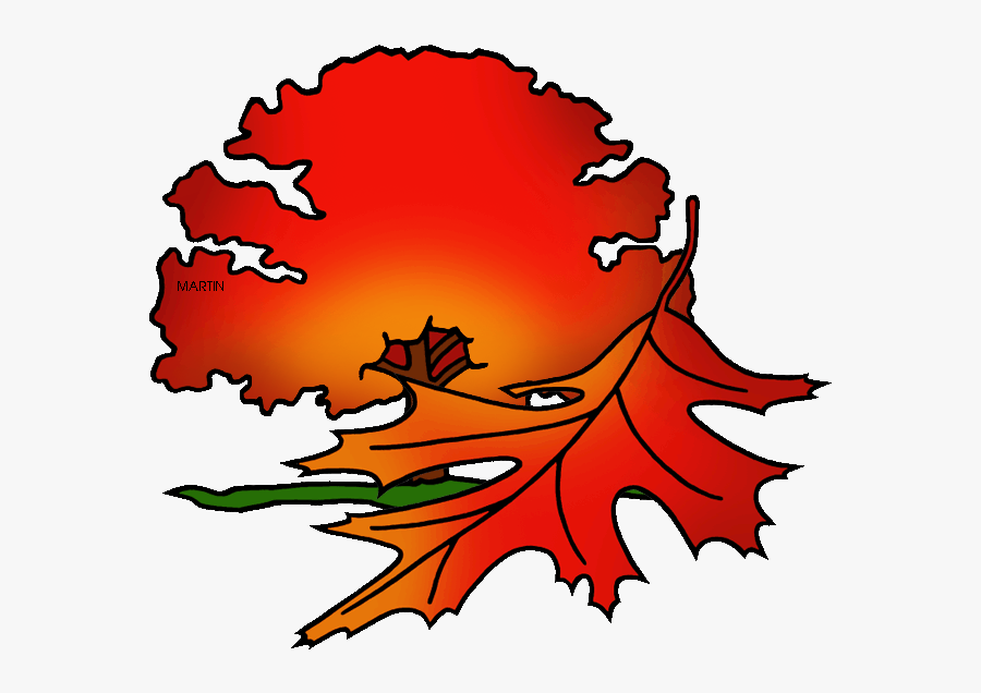 District Tree Of Washington Dc - Full Red Oak Tree Clipart, Transparent Clipart