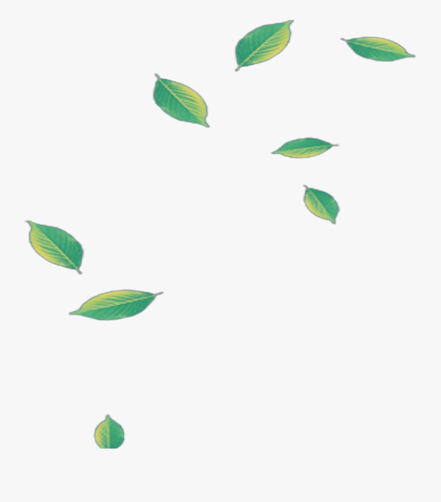 #mq #green #leaf #leaves #falling - Green Leaf Falling Png, Transparent Clipart