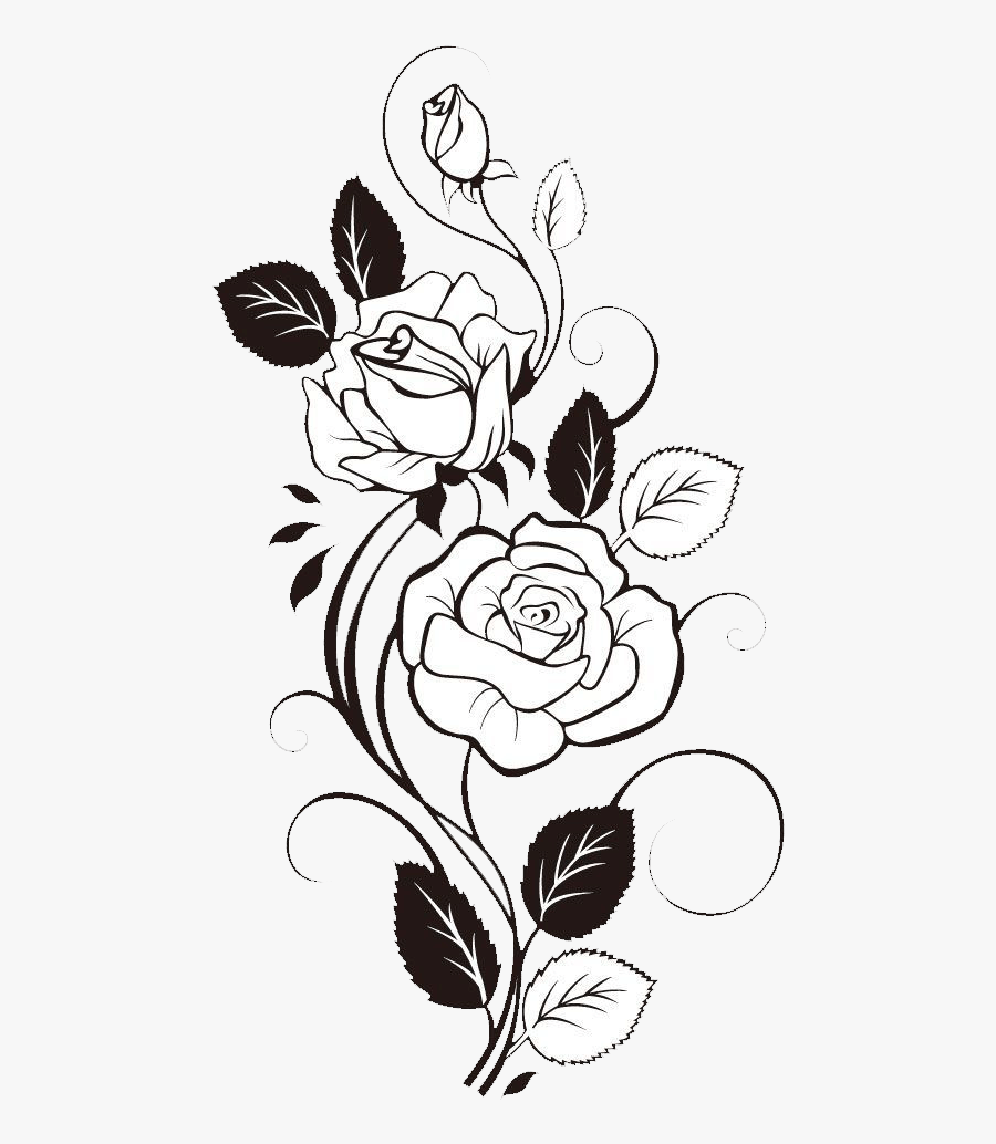 Rose Flower Design Drawing, Transparent Clipart
