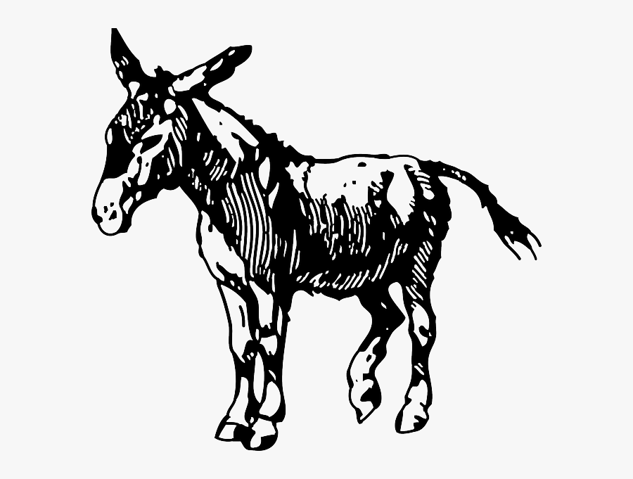 Donkey Clip Art Black And White, Transparent Clipart