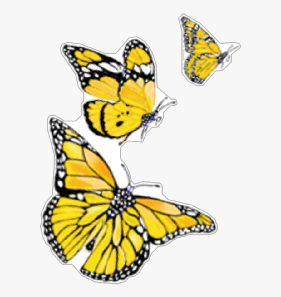 #yellow #orange #butterflies #butterfly - Papilio Machaon, Transparent Clipart