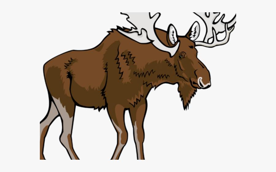 Transparent Moose Antler Clipart - Moose Clipart Png, Transparent Clipart