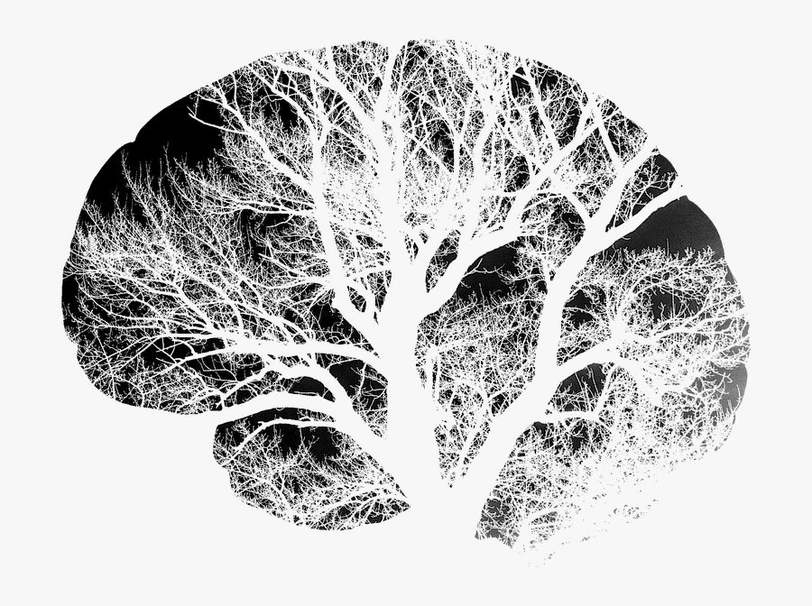 Transparent Brain Outline Clipart Black And White - Brain Art Black And White, Transparent Clipart