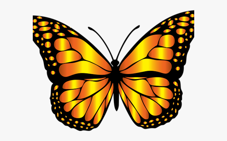 Monarch Butterfly Clipart Png Full Hd - Redbubble Butterfly Sticker, Transparent Clipart