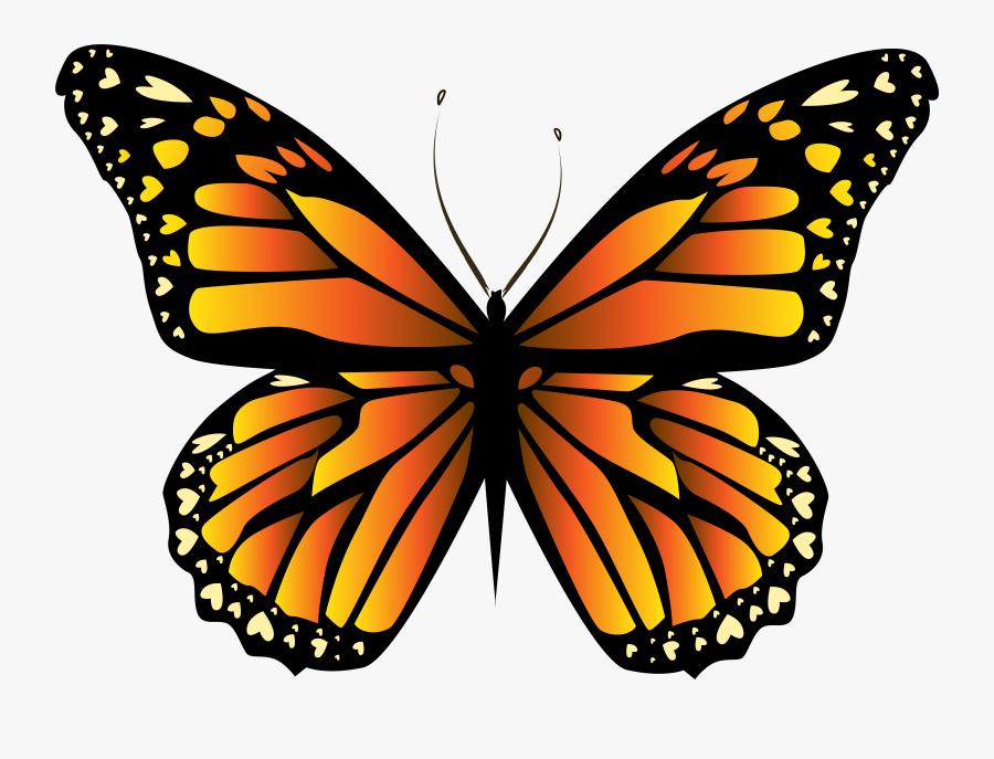 Transparent Butterflies Clipart - Orange Butterfly Png, Transparent Clipart
