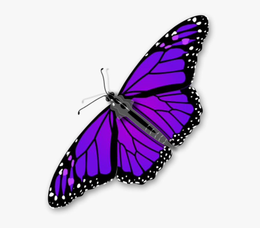 Monarch Butterfly Vector Clip Art Clipart Clipart - Transparent Background Monarch Butterfly Clipart, Transparent Clipart