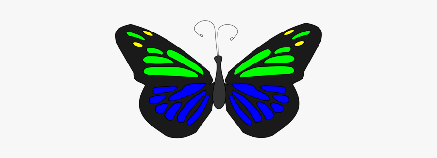 Butterfly - Transparent Butterfly Animated Png, Transparent Clipart
