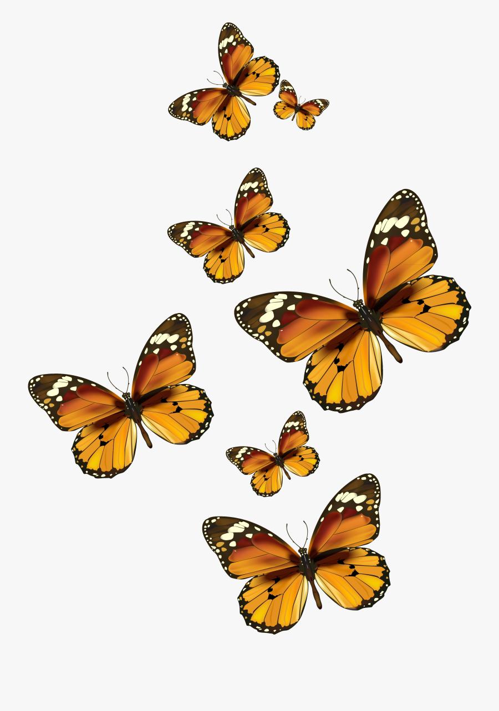 Butterflies Vector Png Clipart Pictureu200b Gallery - Painted Lady Butterfly Clip Art, Transparent Clipart