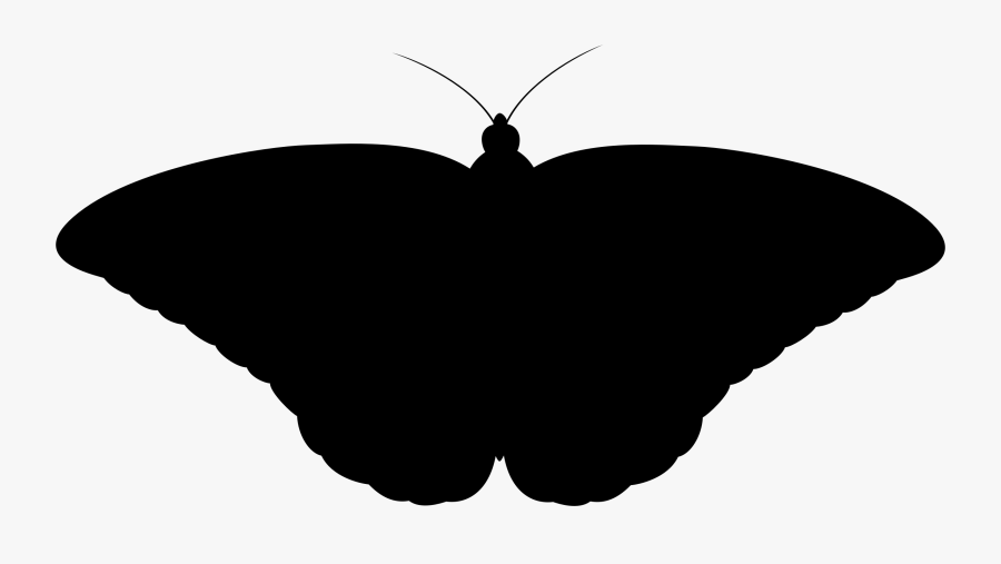 Monarch Butterfly Ii Silhouette Icons Png - Monarch Butterfly Vector Silhouette, Transparent Clipart